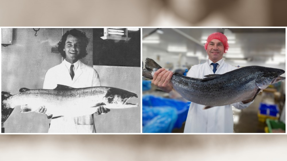 Andy Coulbeck is celebrating 44 years in seafood this month
