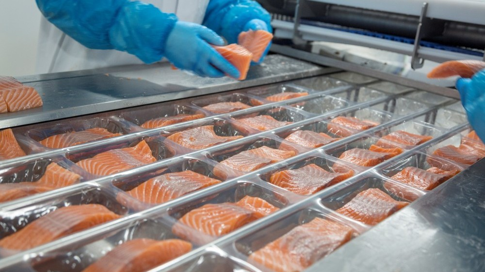 Years of experience in handling the finest salmon