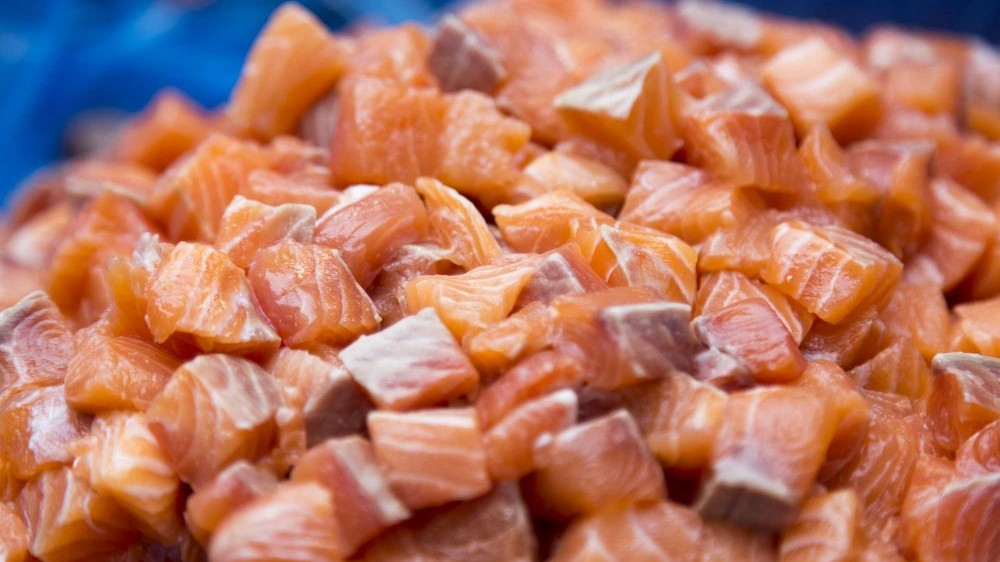 diced raw salmon